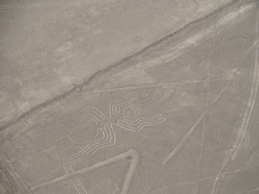 """The Spider"" from the Nazca Lines"