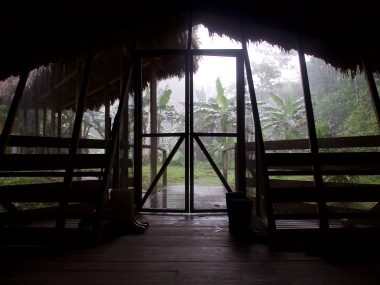 Waiting out a rainstorm in the Amazon